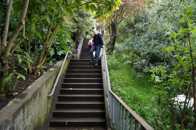 Gerard tackles the steps to Coit Tower