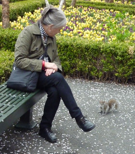 Squirrel conversation
