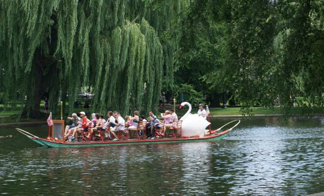Another swan boat